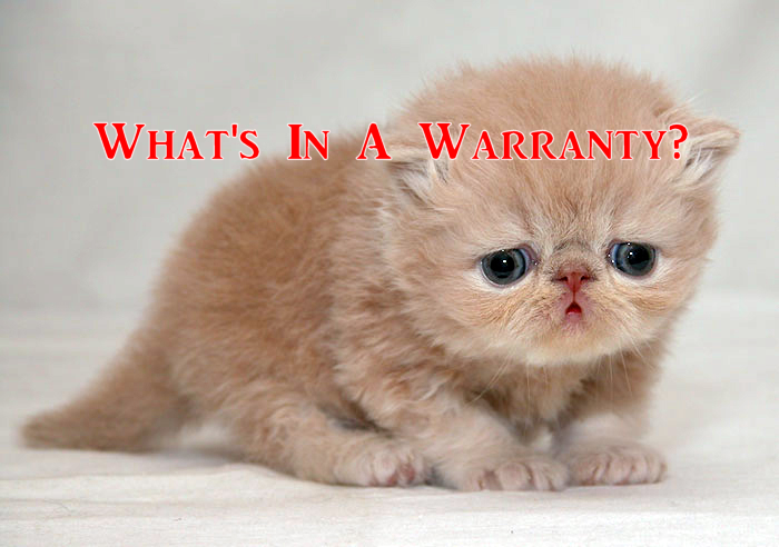 What's in a Warranty?